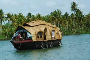 Kerala google trend