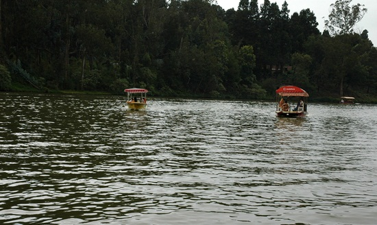 Ooty sightseeing, best south Indian hill stations, Karnataka hill stations