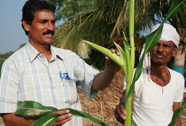 millionaires in Hiware Bazar village, offbeat India