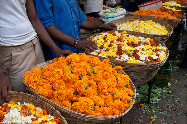 Visit 7 Flower Markets in India where Beauty of Nature is Merchandise for Sale