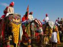 Jaipur Elephant Festival: Amazing Facts about Celebration of Royalty in Rajasthan