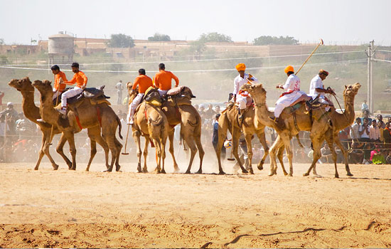 Visit Gogamedi Fair in Rajasthan to See an Offbeat India