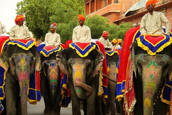 Why Fly to Jaipur for Teej Festival