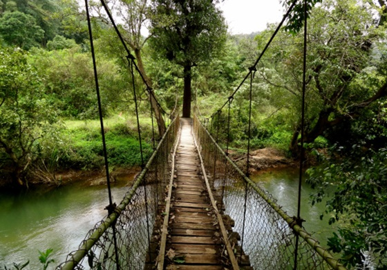 A Walk across These Scary Hanging Bridges in India Sends Shiver down the Spine