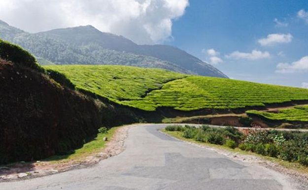 Road trips in India, road trips in South India, coorg to Munnar