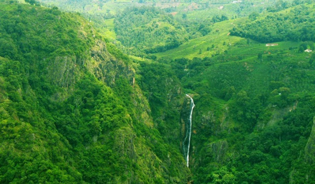 Nilgiri Railways in Coonoor, Tamil Nadu hill stations, summer travel ideas, IndianEagle flights