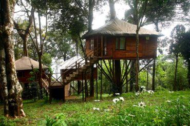 10 Reasons to Visit Kerala this Monsoon