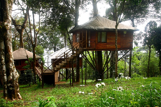 kerala tree houses, tree house cottages, IndianEagle travel, flights to kerala