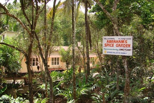thekkady in kerala, ayurveda in kerala, why visit kerala