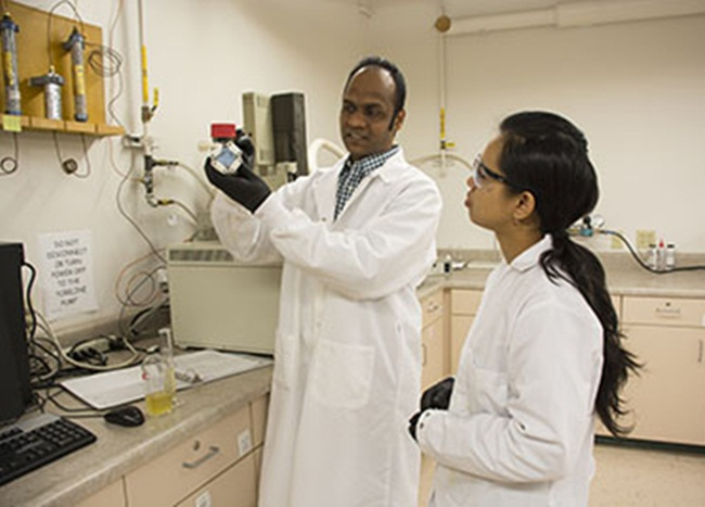 India-origin Scientists Find Solution to Generate Electricity from Food Waste in America